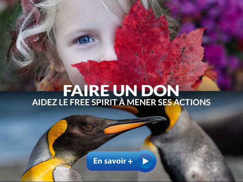 Free Spirit Foundation faire un don