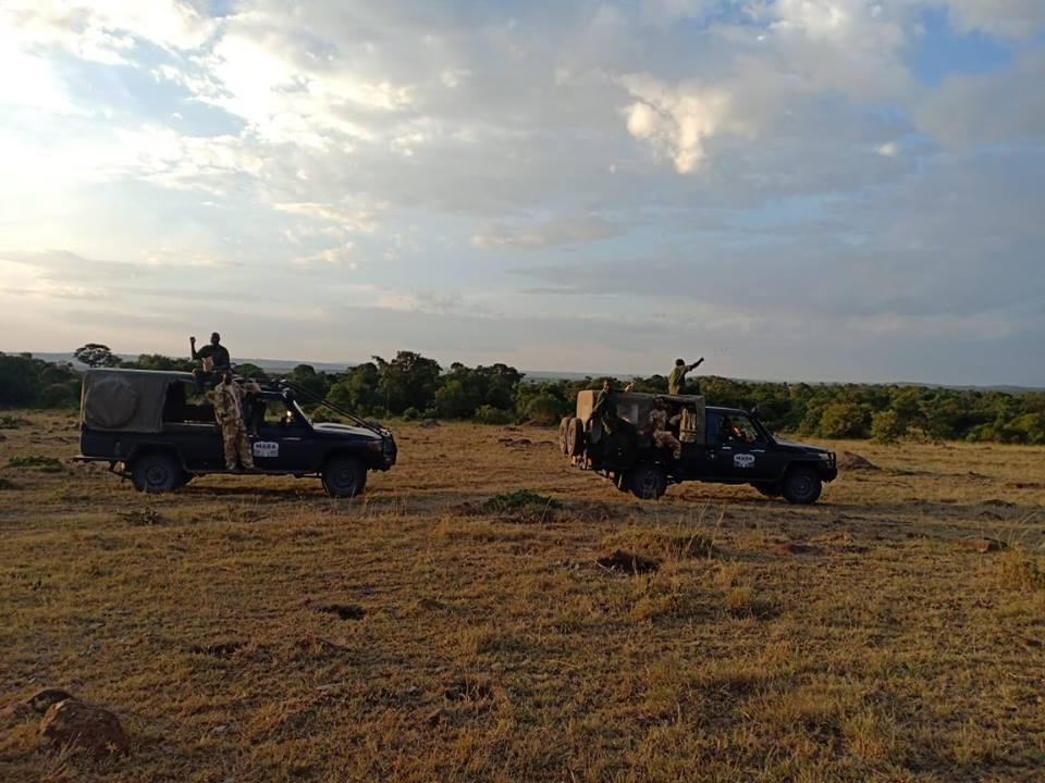 RANGERS protection des éléphants et plantation des arbres